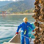 【牡蠣筏】島田水産から学ぶ当たり前を掘り下げて作るコト消費
